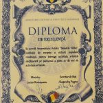 1. MINISTERUL CULTURII SI IDENTITATII NATIONALE DIPLOMA DE EXCELENTA