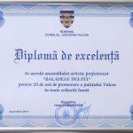 4. CONSILIUL JUDETEAN TULCEA DIPLOMA DE EXCELENTA