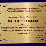 8. CENTRUL CULTURAL PENTRU CONSERVAREA SI PROMOVAREA FOLCLORUL AL JUDERULUI VASLUI PLACHETA
